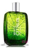 Аромат Bath and Body Works White Citrus for Men